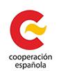 Consejo de Cooperación al Desarrollo
